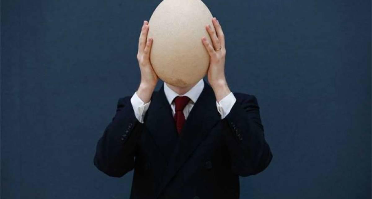 Всё популярнее: на аукционе продали самое большое яйцо в мире