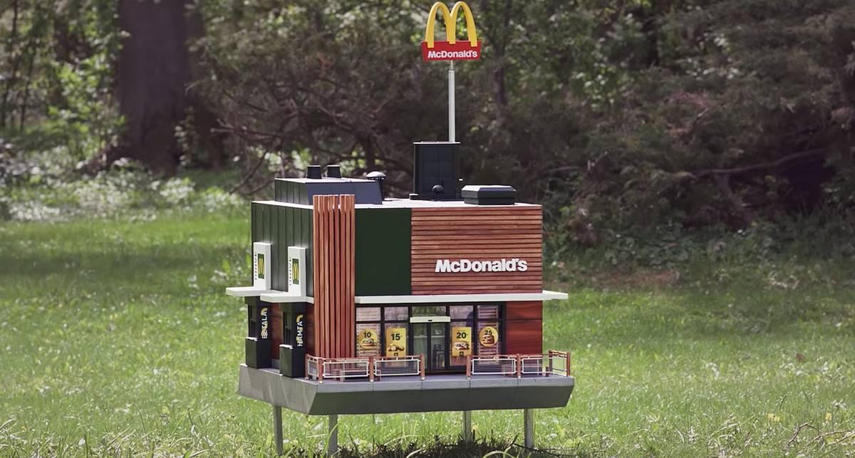 Создан первый в мире McDonald's для пчел