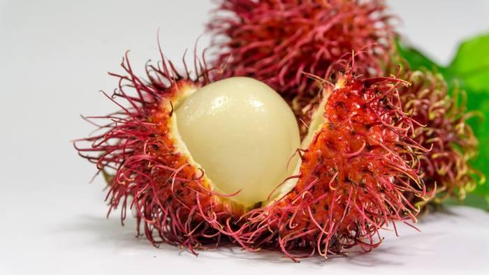 Рамбутан встречается в Юго-Восточной Азии
