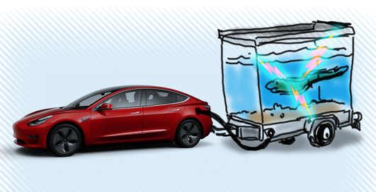 Теория и практика: можно ли зарядить Tesla электрическими угрями?
