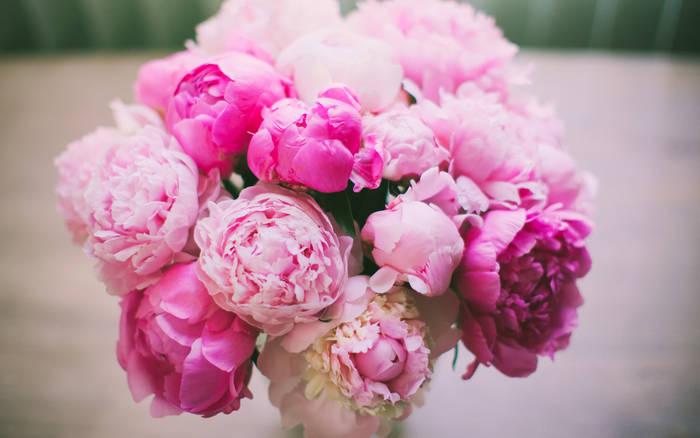 Бело-розовые оттенки пионов оттенят и подчеркнут красоту твоей девушки