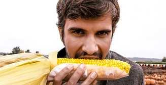 Для печени и желчного пузыря: 5 полезных свойств кукурузы