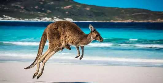 10 мест в Австралии, которые стоит посетить [Неделя Австралии на MPort]