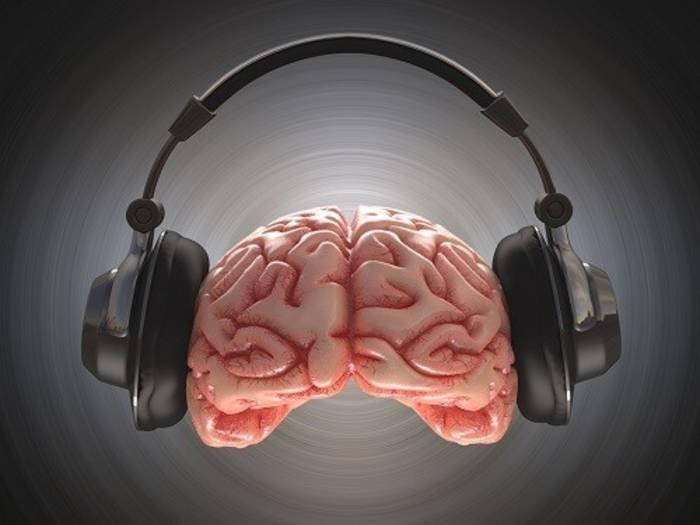 Музыка иногда, кажется, проникает в самый мозг