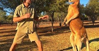 10 странных фактов, доказывающих, что Австралия - необычная страна [Неделя Австралии на MPort]