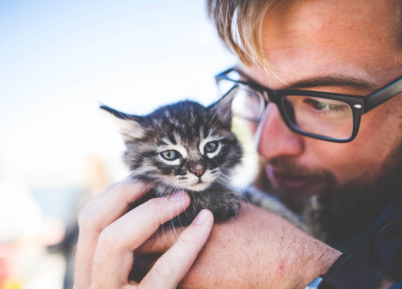 Диарея и менингит: 5 болячек, который можешь подхватить от домашнего животного