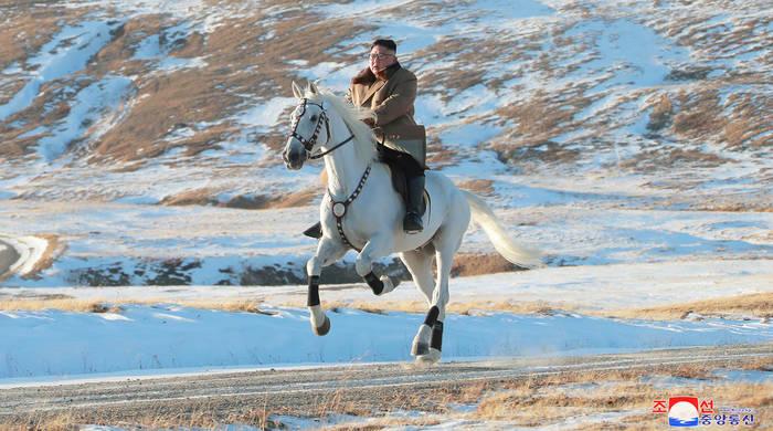 Скакать на коне - не самое полезное занятие