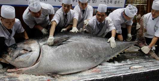 Дорого-богато: в Японии продали тунца за $1,8 млн