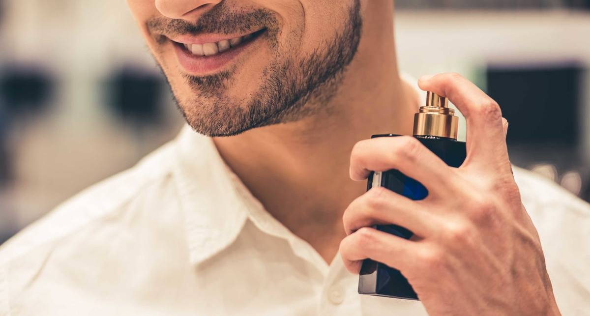 Строгие и благородные: 9 мужских ароматов с нотами кедра