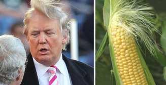Трамп, Киану Ривз и малыш Йода: 10 самых популярных мемов десятилетия