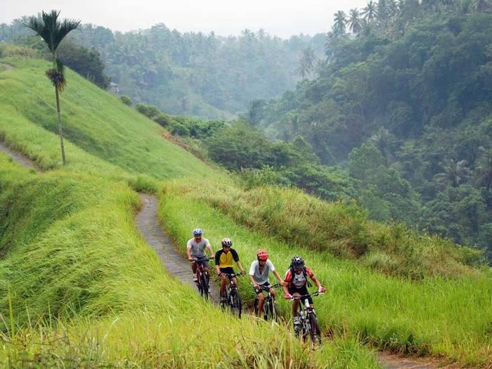 Велосипедный тур по Бали — идеален для путешествия семьей