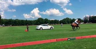 Бессмысленно, но круто: гонка Tesla Model S против лошади