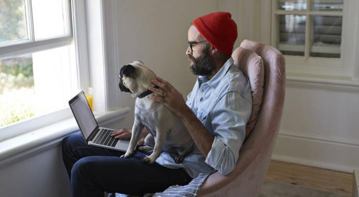 Работать дома — прекрасно: можно и в окно поглазеть, и собаку погладить