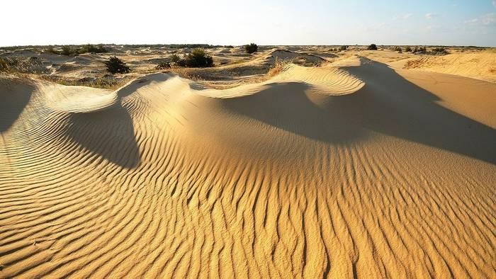 Алешковские пески - наша местная Сахара