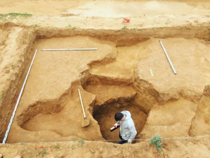 Археолог-патоэколог — тот, кто ищет и ковыряется в экскрементах