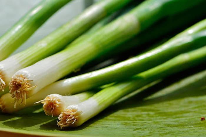 Не выбрасывай корешки — из них можно вырастить зеленый лук дома