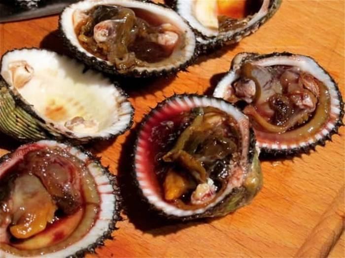 Крови в моллюсках, конечно, нет, но выглядит жутковато