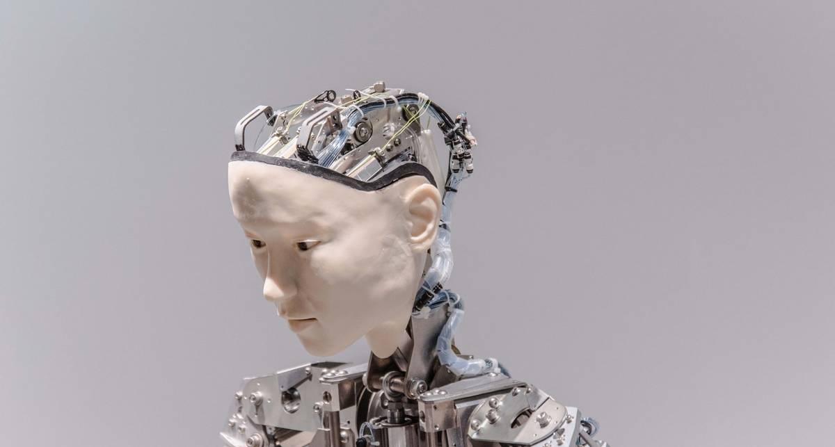 Робот, рестлеры и апокалипсис: 13 лучших снимков Sony World Photography Awards 2020