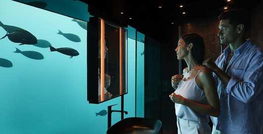 Жизнь под водой: как выглядит первая в мире люксовая резиденция на дне океана