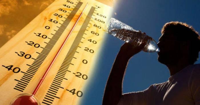 Добивает жара — пей много воды и не высовывайся на солнце