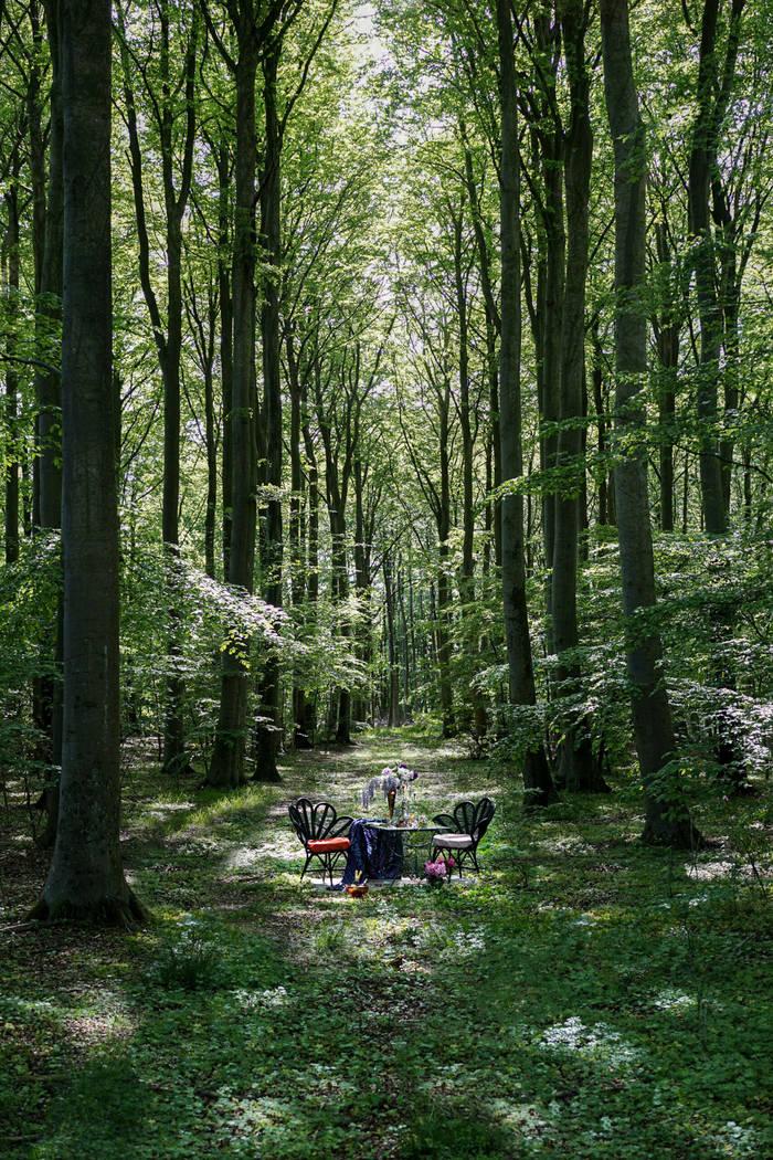 Классический столик Nowhere - в лесу среди нетронутой природы