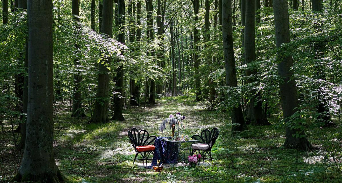 Самое социально дистанцированное заведение в мире: шведский ресторан Nowhere в диком лесу