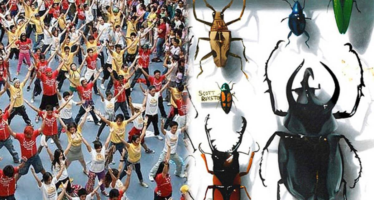 Самые странные хобби миллионеров: от жуков до флеш-мобов