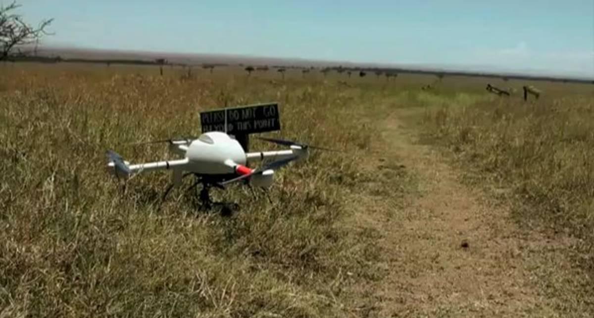 Квадрокоптер в африканской саванне