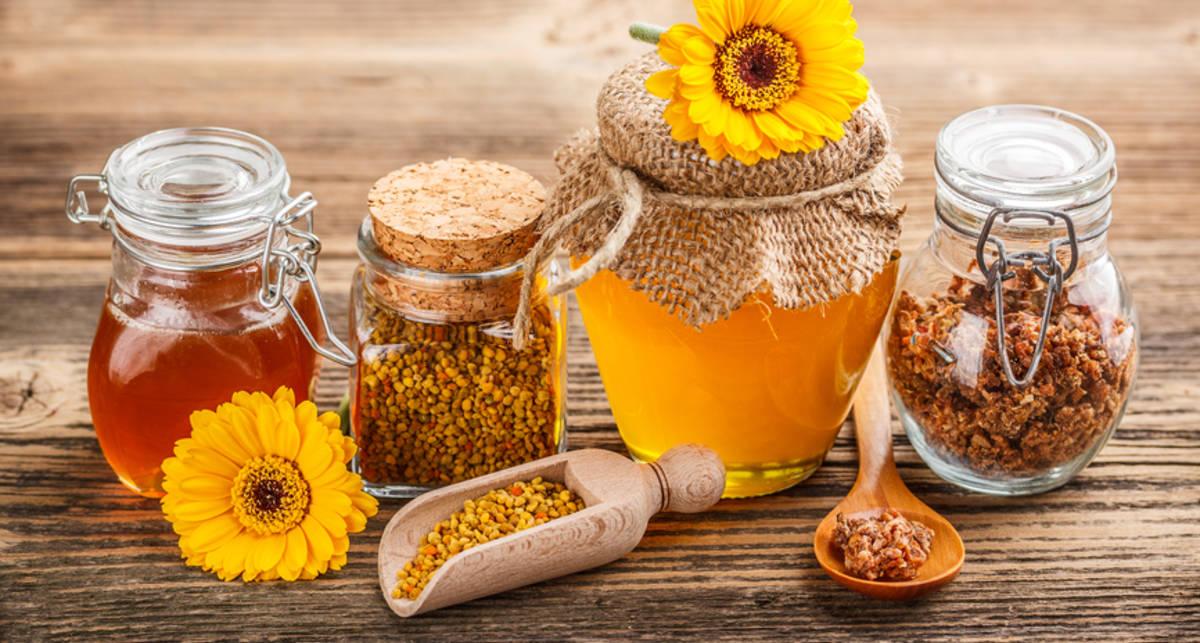 Польза меда: ТОП-3 самых целебных свойства