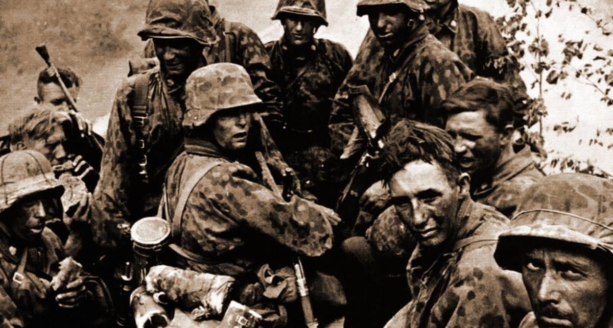 Жабы Гиммлера: как появился военный камуфляж