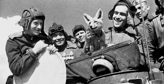 День танкиста: 10 интересных фактов о бронемашинах