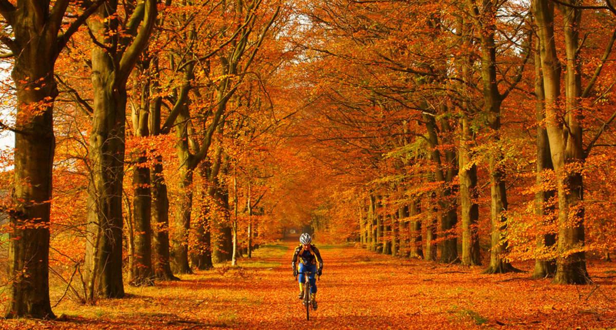 Осенний лукбук велосипедиста: 10 аксессуаров