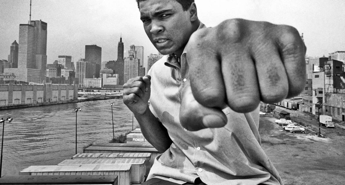 Стальной кулак: 10 самых крутых бойцов мира