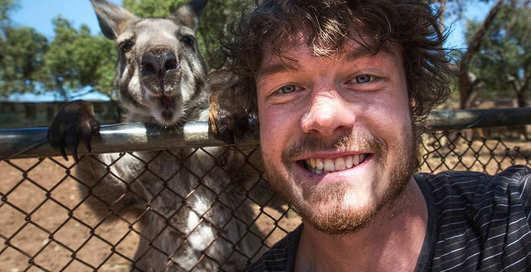 Звериное селфи: 13 смешных автопортретов с животными