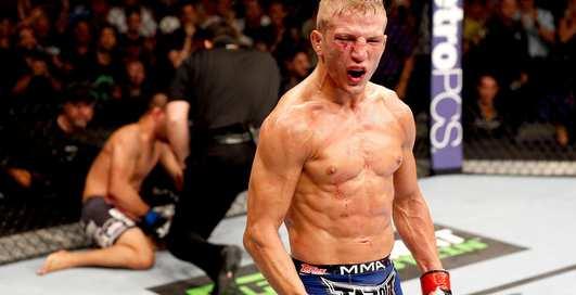 Бои MMA: десять жестких нокаутов