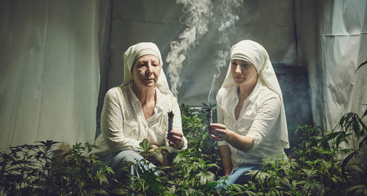 Святые угодницы: монашки из США выращивают травку