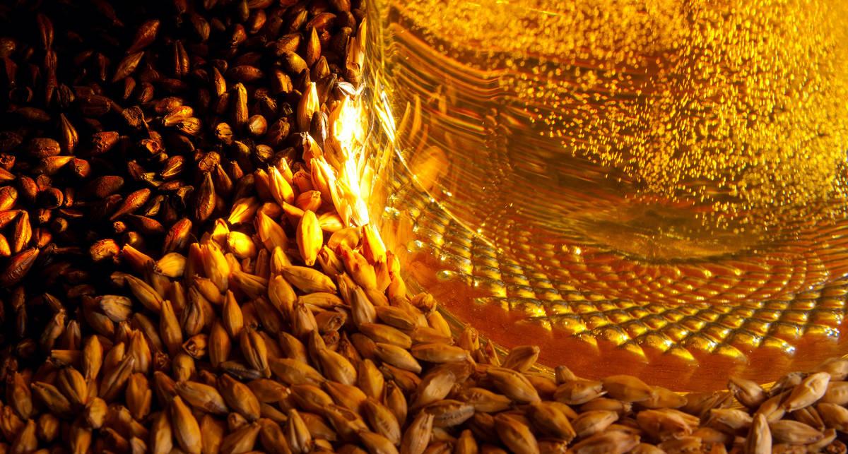 Как готовили пиво пять тысяч лет назад