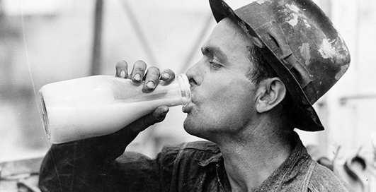 Молоко поможет быстрее сыграть в ящик — ученые