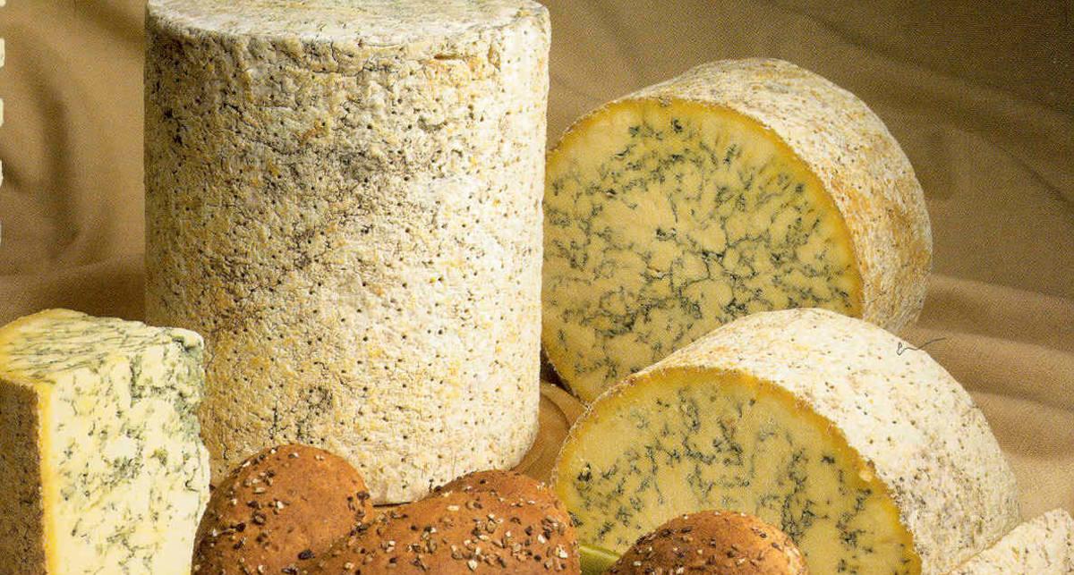 Еда миллионеров: пять самых элитных сортов сыра