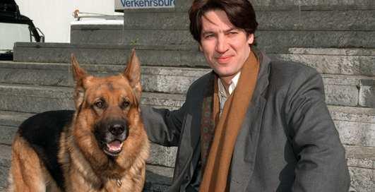 Мохнатые актеры: интересные факты про собак в кино