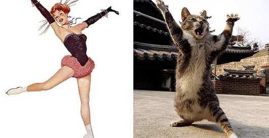 Дерзкие коты, пародирующие пинап-красоток