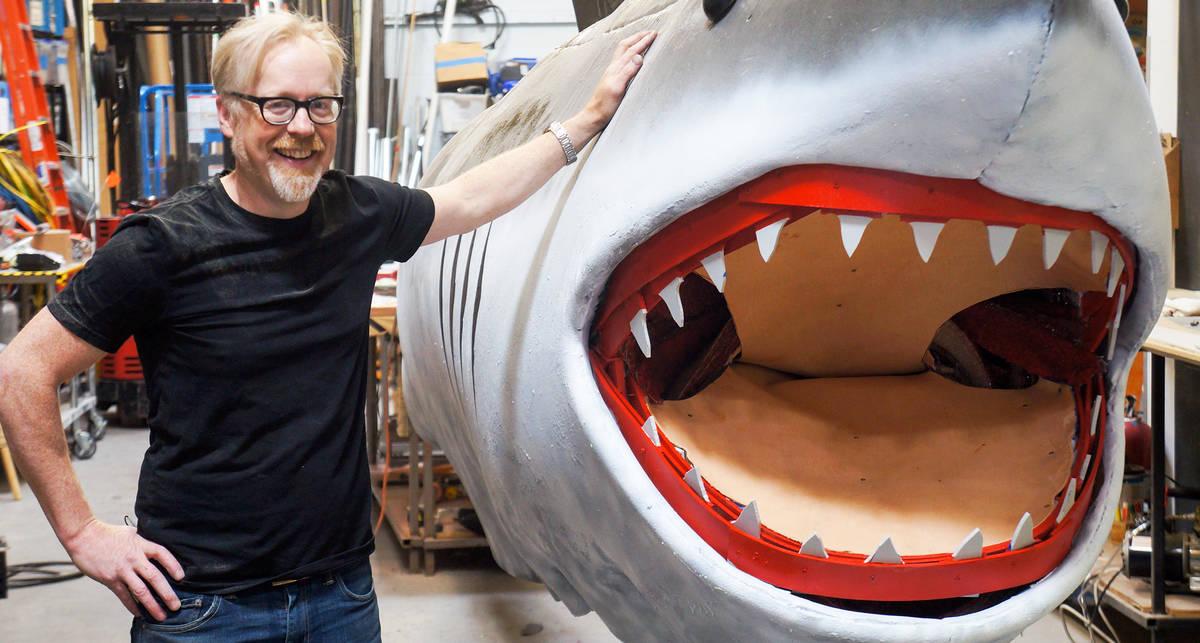 Реально ли акулы хотят съесть человека, учуяв его кровь