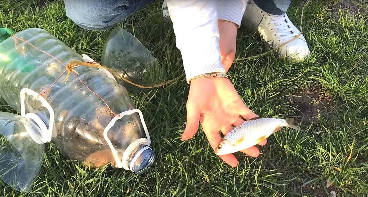 Лайфхак: ловушка для рыб из пластиковых бутылок