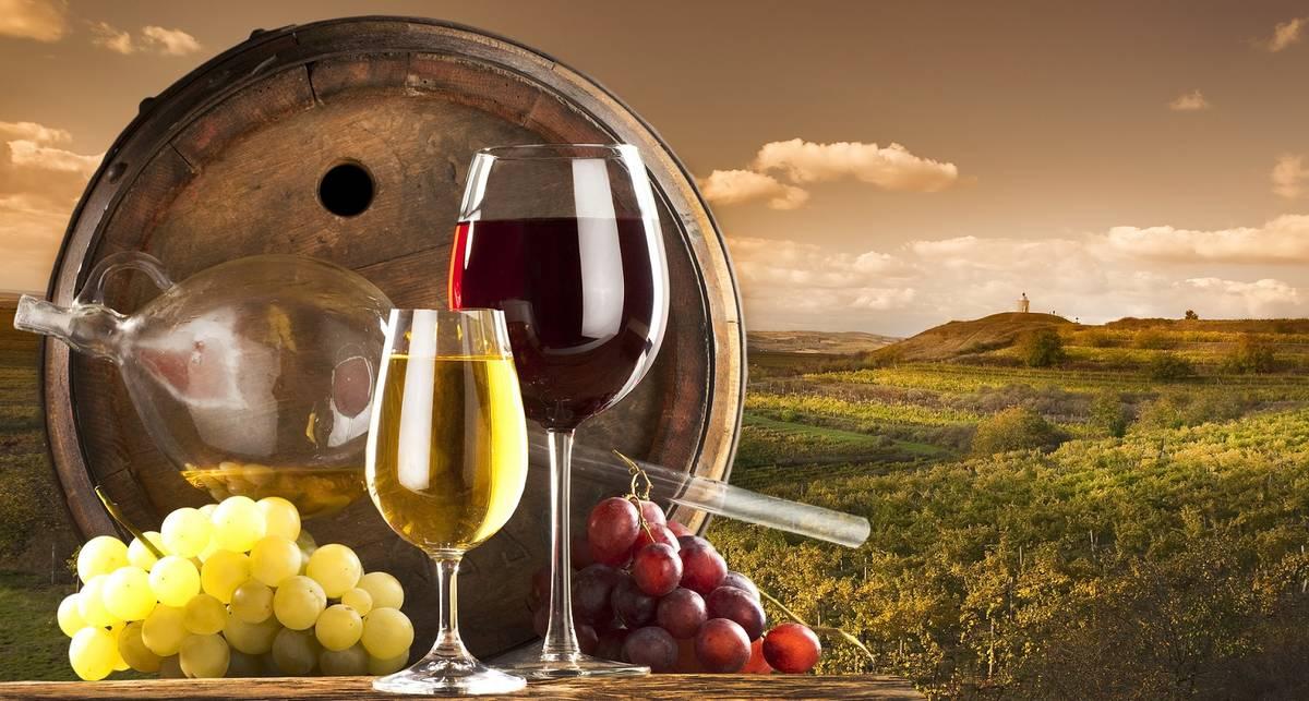 Красно-белое, вперед: 6 глупейших мифов о вине