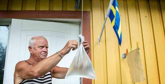 Действительно ли пакет с водой отгоняет мух