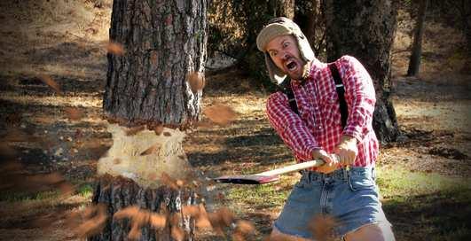 Оригинальные лайфхаки с деревом, которые точно пригодятся в быту