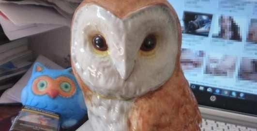 Антиквар продавал статуэтку совы и попался на просмотре порно