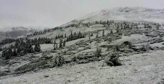 Суровая погода: Карпаты засыпало снегом посреди лета