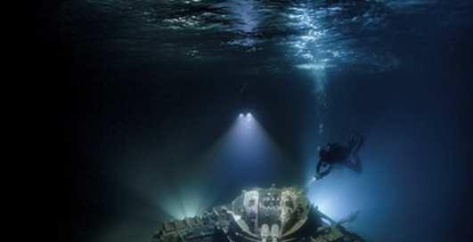 Лучшие подводные фото 2018 года