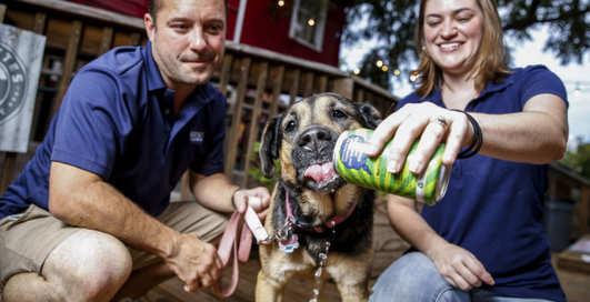 Семейная пара варит крафтовое пиво для любимой собаки
